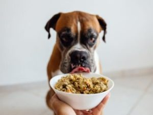 Pesquisadores vão rastrear genes ligados à replicação do novo coronavírus